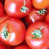 トマトとリコピン